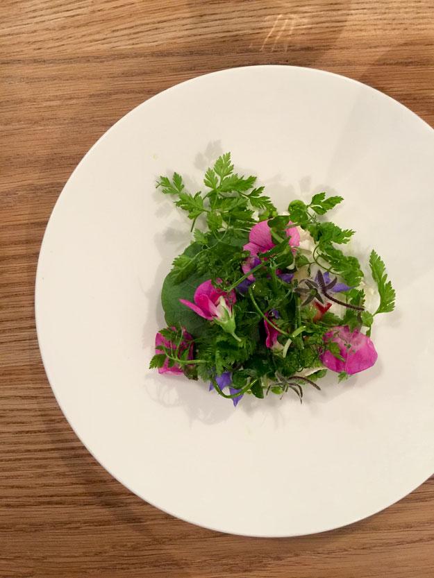 סלט קטן שמתחתיו מסתתרת גבינת עיזים, נראה כמו ערוגה בגינה אביבית, מעוטר בפרחים אכילים