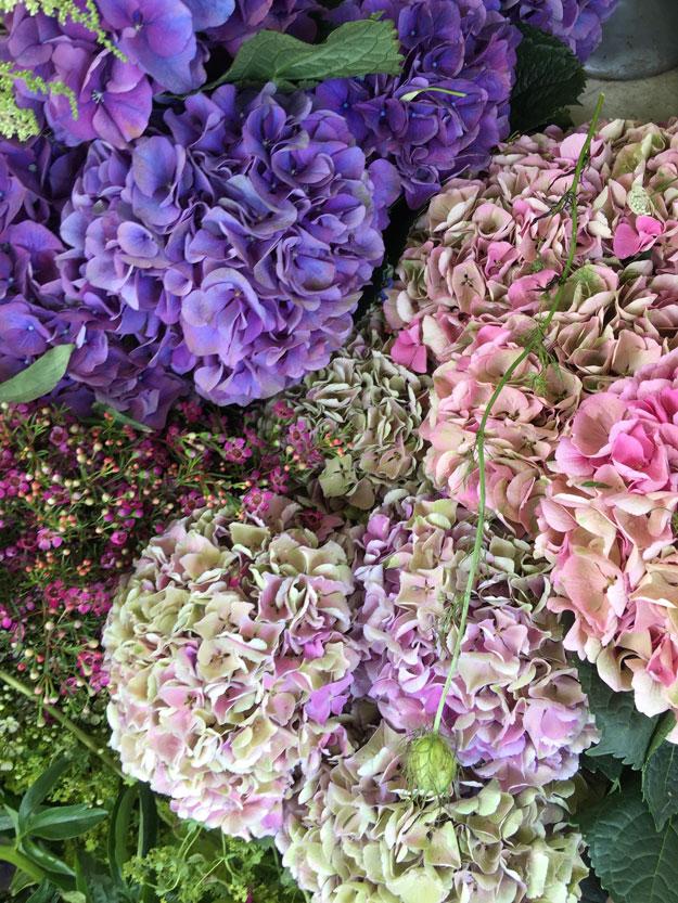פרחים רחובות יפים ושופינג בנוטינג היל