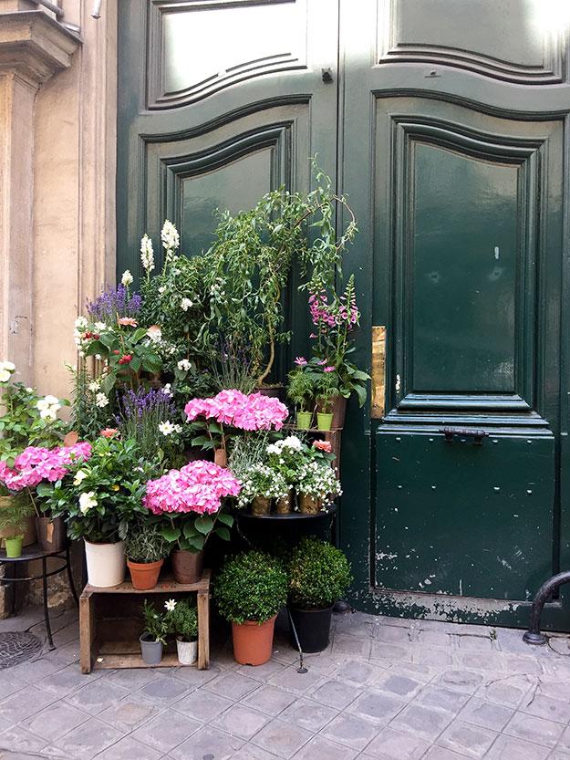בכניסה לחנות הפרחים האהובה עלי ברובע הלטיני