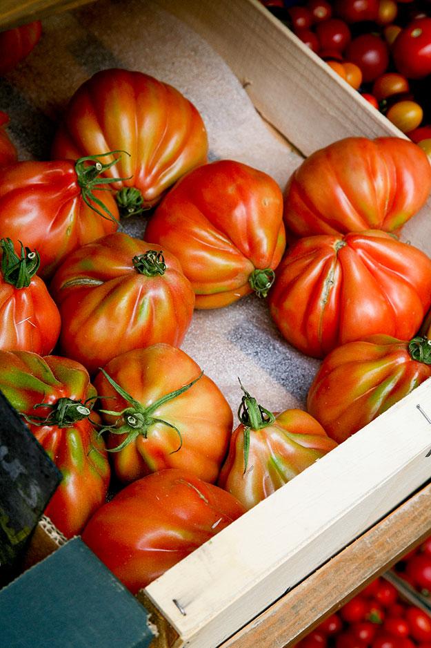 נכבשנו בקסמן ובצורתן המעוותת של עגבניות לב הפרה, Tomates Coeur de Boeuf,