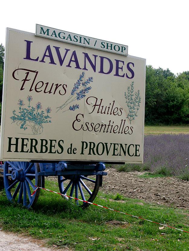 בדרך חוות חקלאיות לגידול לבנדר, אפשר לעצור ולקנות מהתוצרת המקומית