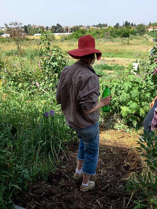לסדנא מגיעים אנשים שאוהבים ולומדים את התחום, גם חובבנים כמוני, שזו פעם ראשונה שאני מנסה לטפח גינה אורגנית
