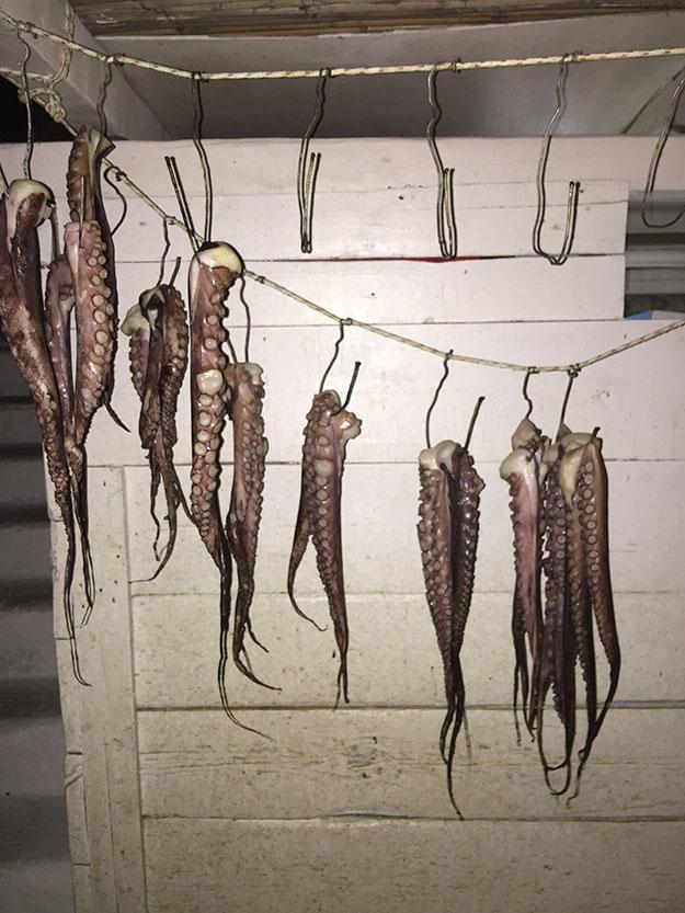בצידה האחורי של המסעדה תלויים ליבוש זרועות של תמנונים, מחזה שהפך לצילומי האינסטגרם הפופולריים ביותר במיקונוס