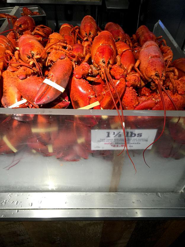 בשוק צ'לסי פירות הים ולובסטרים איזה שפע מטורף