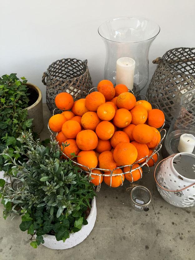 תפוזים בבית האירוח