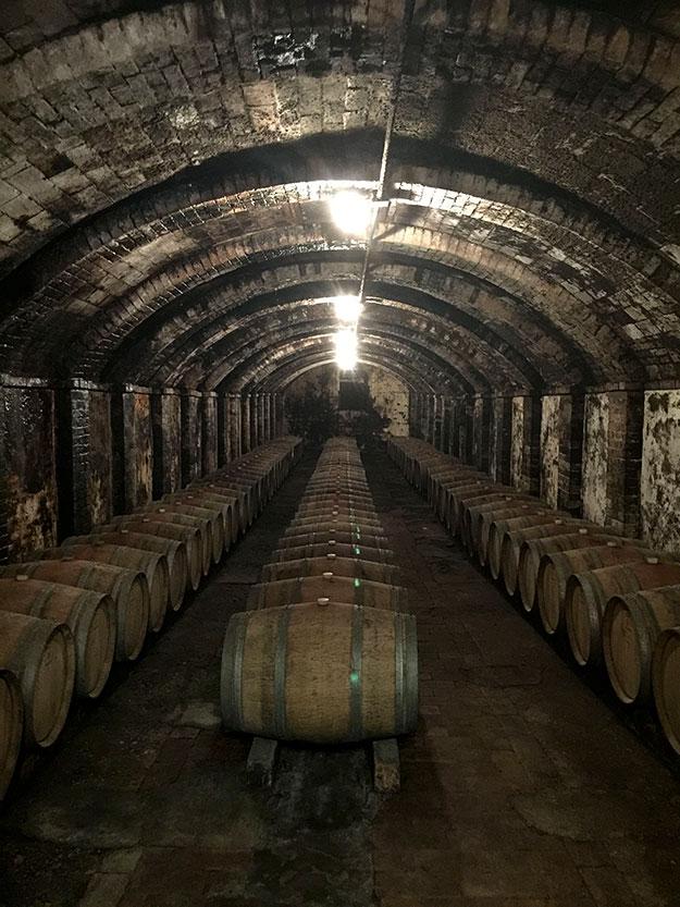 מתחת לטירה, ביקב סונינו, השתמר רחוב עתיק, מקומר, מתקופת ימי הביניים, שהפך למרתף לאחסון חביות עץ ענקיות