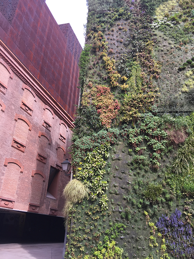 עוד זווית של קאישה פורום מדריד, מרכז אמנות גדול, על צלע הבניין צומחת גינה אנכית מפורסמת, הכי מצולמת באינסטגרם