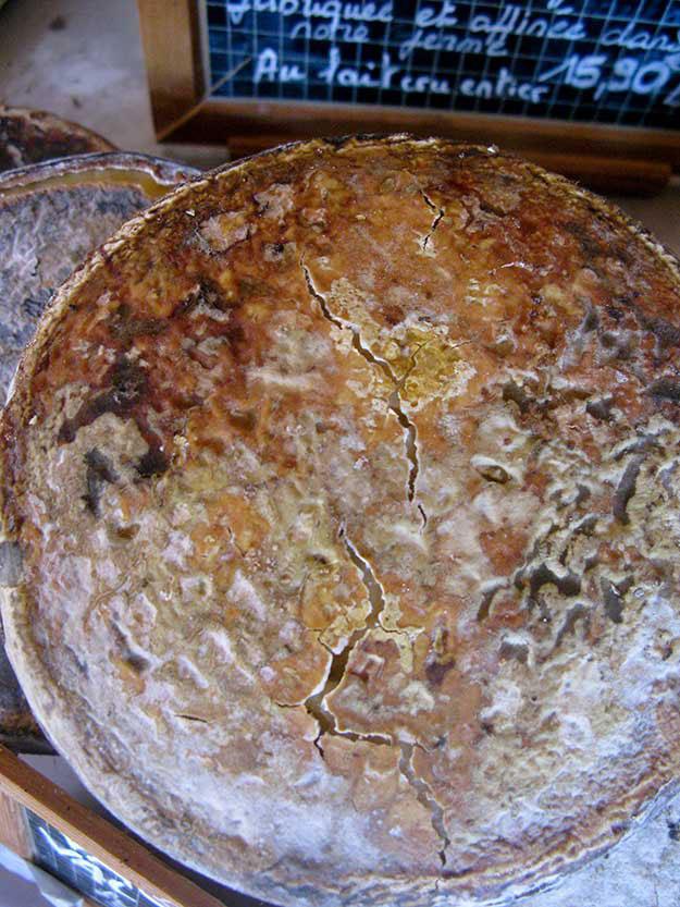 חריץ גבינה שנראה כמו פני הירח