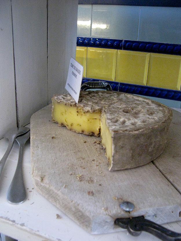 חריץ גבינה מחלב פרות אלפיניות בקוטר של חצי מטר