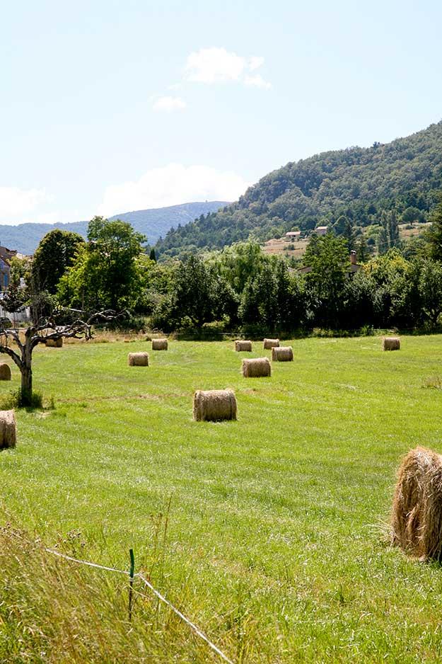 בדרך החקלאית היפה לכיוון העיירות היפות של פרובאנס באזור לוברון