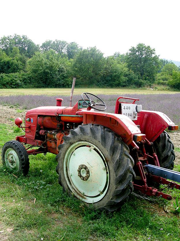 טרקטור בדרך חוות חקלאיות לגידול לבנדר, אפשר לעצור ולקנות מהתוצרת המקומית