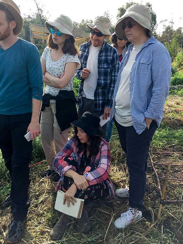 החלק התיאורטי בסדנא, לא פחות חשוב. מתחילים להבין מה נדרש כדאי להקים גינת ירק אקולוגית