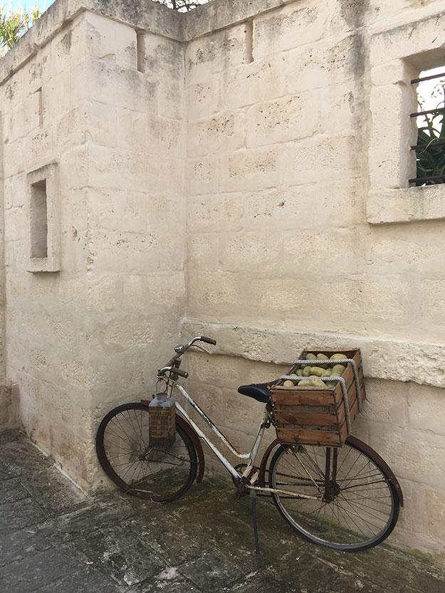 אופניים המשמשים את האורחים במלון