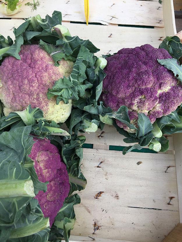 ירקות טריים מגיעים לשווקי האיכרים מהחוות