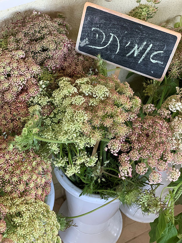 אמיתה פרחים לסידור אורית מדגינה איך להציב את הפרחים בתוך הכד